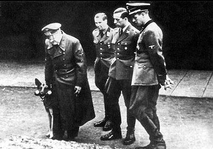 Hitler spaceruje z psem w Wilczym Szancu